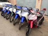 hot-viet-nam-vua-nhap-ve-lo-hang-suzuki-sport-110-va-ya-z-new-100-22-1393169489-530a145164bcb.
