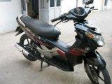 Cho thuê xe máy ở Hoàng Mai.